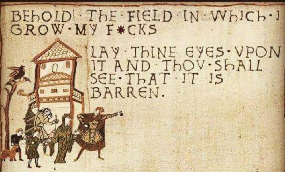 Bayeux Tapestry parody - field of f*cks